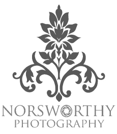 Image Logo Np Portrait Grey copy